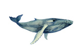 The Whale's Song II Reproduction d'art par Grace Popp
