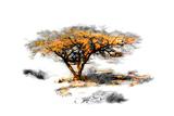 Trees Alive II Reproduction d'art par Ynon Mabat