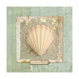 Seashore Collection II Giclée premium par Elizabeth Medley