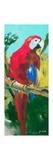 Tropic Parrots II