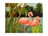 Tropical Flamingo II