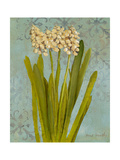 Hyacinth on Teal II