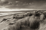 Windswept Sand Dunes on the Beach at Studland Bay  with Views Towards Old Harry Rocks  Dorset