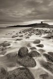 Dunstanburgh Castle at Dawn from Embleton Bay  Northumberland  England Spring (April)