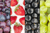 Collage of Four Summer Fruits