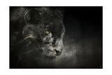 Out of the Shadows Black Leopard Giclée par Jai Johnson