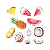 Watercolor Summer Fruits Set
