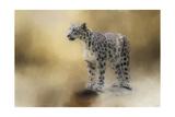 Léopard des neiges Giclée par Jai Johnson
