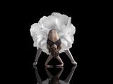 Danse Reproduction d'art par Natalia Baras