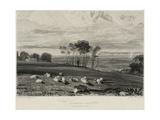 Pevensey Bay  from Crowhurst Park