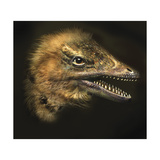 Archaeopteryx Portrait