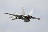 Spanish Air Force Ef-18M Hornet Taking Off