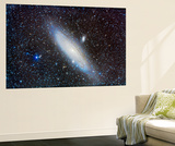 Andromeda Galaxy with Companions