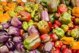 New York City  Ny  USA Farmers Market