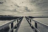 North Carolina  Outer Banks National Seashore  Corolla Boardwalk