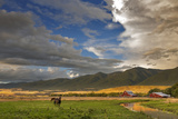 Barn Along Indian Creek and the Whitefish Range  Eureka  Montana