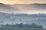 Australia  Victoria  Yarra Valley  Landscape  Dawn
