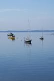 Canada  New Brunswick Fishing Boats on Passamaquoddy Bay