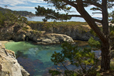 China Cove  Point Lobos State Reserve  Carmel  California  USA