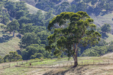 Australia  Adelaide Hills  Landscape