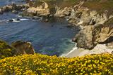 Beach and Cove  Garrapata State Park  California  USA