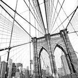 NY Theme V