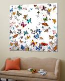 Papillon Toile Murale Géante par Allyson, Allyson Fukushima