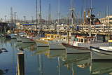 Fishermen's Terminal; San Francisco California United States of America