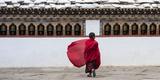 A Young Monk Walking Through a Monastery Papier Photo par Michael Melford