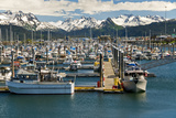Scenic View of the Homer Small Boat Harbor with the Kenai Mountains in the Background