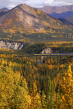 Alaska Railroad Train Crossing a Tressel at Denali National Park  Interior  Alaska  Fall
