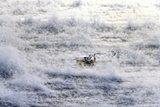 Sea Smoke Rises Up around a Fishing Boat in Casco Bay on a Cold Winter's Day
