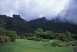 Kirstenbosch National Botanical Gardens in Cape Town  South Africa