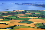 Fields in Late Summer Along North Down Strangford Lough  County Down  Northern Ireland