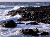 Giant's Causeway on the North Coast of Northern Ireland