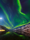 View of the Aurora Borealis  Northern Lights  Rand Moon Reflected in a Fjord