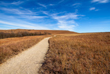 Pathway into the Prairie