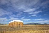Rural Landscape of Haystack