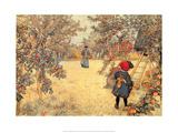 Gathering Apples  1904