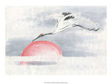 Flying Stork over the Setting Sun