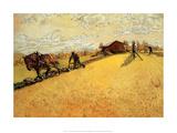 The Farmer  1906