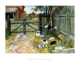 Chickens in the Yard  1904