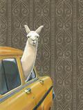 Taxi Llama Giclée par Jason Ratliff
