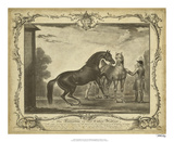 Distinguished Horses III