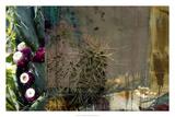 Texas Cactus Collage