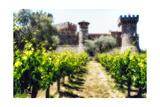 Napa Valley Dream Castle