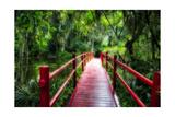 South Carolina Zen Path