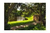 Southern Plantation Scenic  Charleston  SC