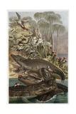 The Nile Crocodile by Alfred Edmund Brehm