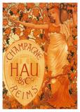 Champagne Hau Reims